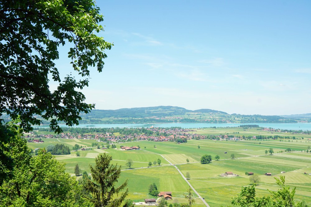 View of green landscapes of bavarian countryside